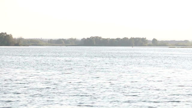 Evening Landscape on The Clear River video
