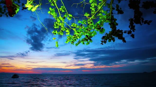 Evening seascape video