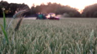 Evening sunset rays illuminating chemicals spray with tractor equipment video