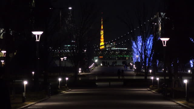 Evening View of Tokyo Tower -4K- video