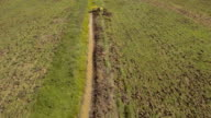 Excavator digging a trench in the field.Aerial video video