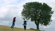 Excited young guys jumping, dancing, friends enjoy recreation in park video
