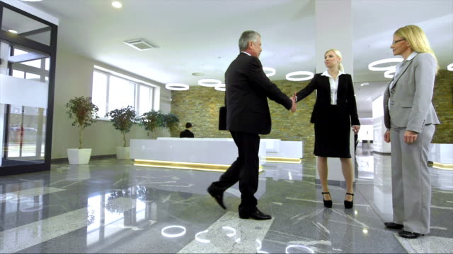 DS LS Executives Greet In The Lobby video