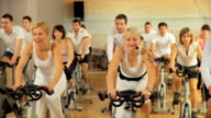 HD DOLLY: Exercising In The Gym video