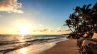 Exotic Beach in Dominican Republic, Punta Cana video