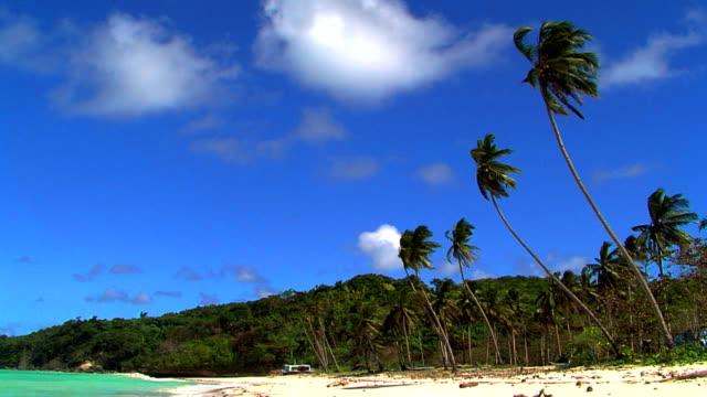 Exotic beach video