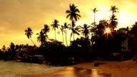 exotic unawatuna beach, sri lanka video
