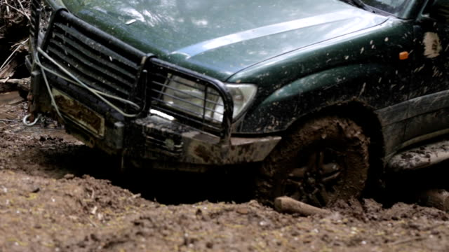 Expeditionary SUV got stuck in the mud in the forest, off-road video