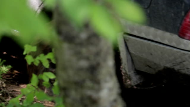 Expeditionary SUV rides through the woods slowly on dirty road. video