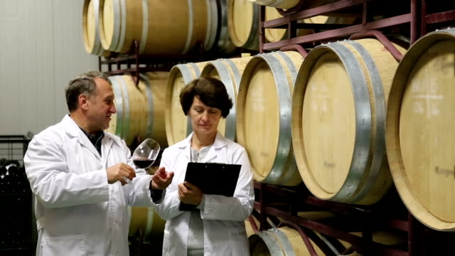 Expert and wine maker estimate quality of  wine video