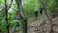 explorers hiking on a extreme terrain , climbing mountain in a forest video