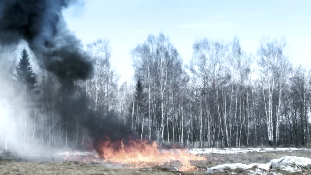 Explosion in a field video