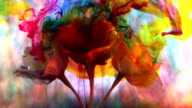 Explosion of colour around blossom in bloom video