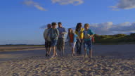 Extended Family Group Walking Along Beach video