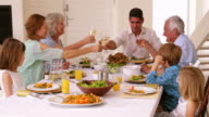 Extended family toasting at dinner video