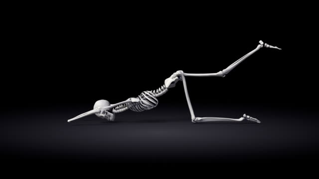Extended Puppy Pose Of Human Skeletal video