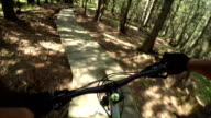 FIRST PERSON VIEW POV: Extreme downhill biker riding on wooden bike trail track video