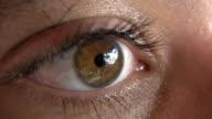 eye in macro,extreme detail video