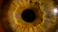 Eye iris and pupil macro . Many color correction options video