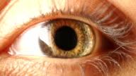 Eye iris contracting video