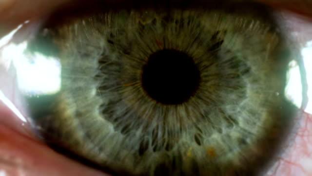 eye macro video