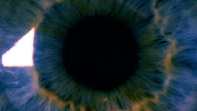 Eye pupil pulsating video