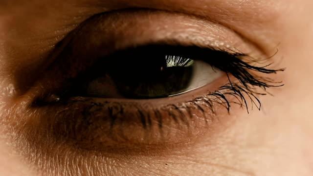 Eye zoom into iris with computer digital data video
