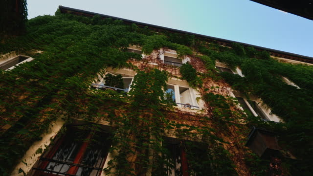 Facade of a medieval house in Rome. Covered with ivy. Wide lens shot video