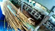 Factory cane video
