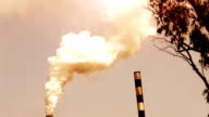 Factory Pollution video