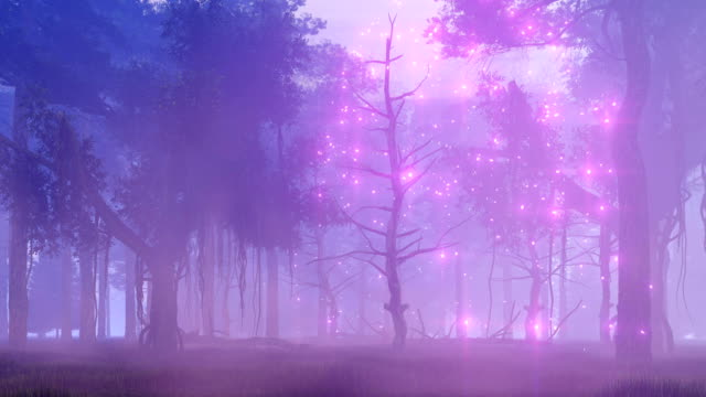 Fairy lights in magical misty night forest video