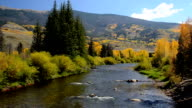 Fall Colors Along the Blue River in Summit County, Colorado video