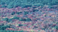 Fall Colors Near Concord  - Aerial View - Massachusetts,  Middlesex County,  United States video