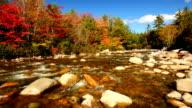 Fall foliage along a river video