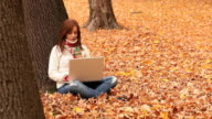 Fall Laptop Young Woman video