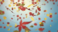 Falling Autumn Leaves Background Loop - Soft Blue (Full HD) video