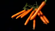 Falling Carrots video