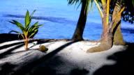 Falling coconut video