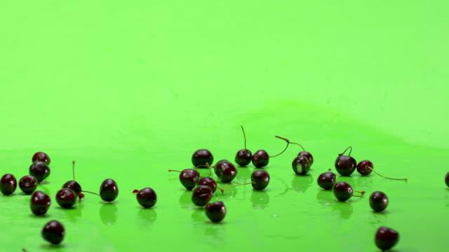 Falling down of fresh cherries footage. Green screen. Slow Motion. video