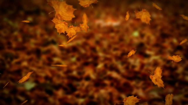 Falling leaves autumn loopable video
