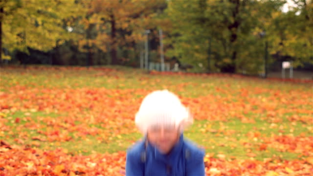 Falling Leaves video