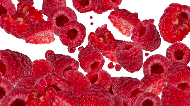 Falling Raspberries as background video (with Alpha) video