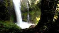 Falls Creek Fall, Washington video