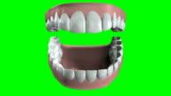 False Teeth Opening And Closing video