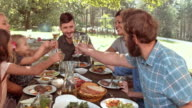 DS Family and friends raising glasses at picnic table video