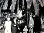 Family and palm tree--From 1930's film video