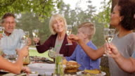 Family clinking glasses sitting at the picnic table video