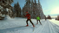 TS SLO MO family cross country skiing on sunny day video