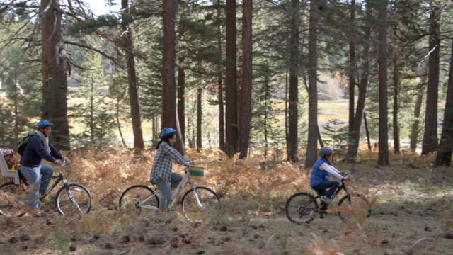 Family cycling through a forest together, left to right pan video