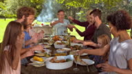 DS Family eating at the picnic table on a nice sunny day video